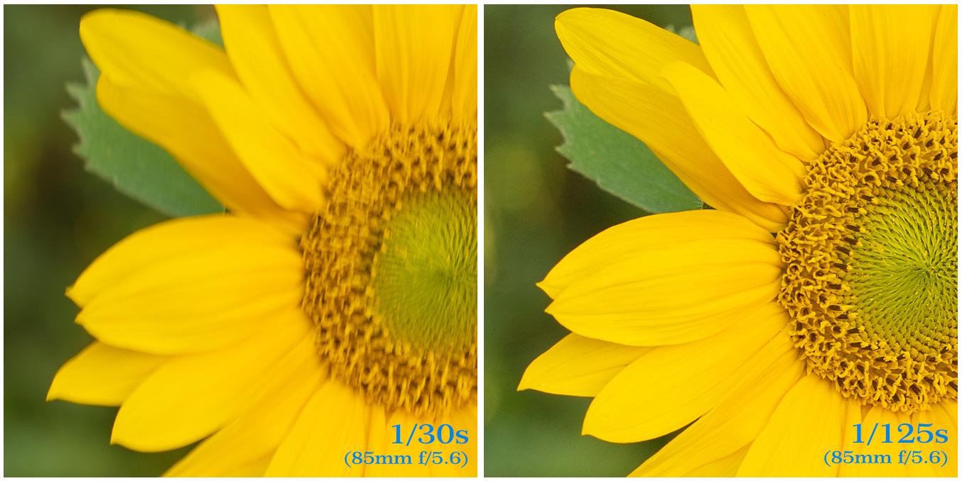 Nieostre zdjęcia - różne czasy naświetlania
